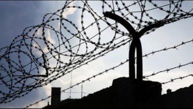 akp 174 cezaevi daha hedefliyor gelismis ulkeler universite turkiye cezaevi mujdeliyor 1507113574